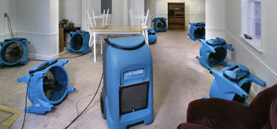 Wet Carpet Cleaning And Drying Service, How To Dry A Flooded Basement Carpet