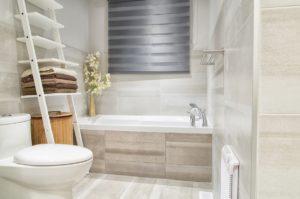 Flood Services Bathroom mold causes
