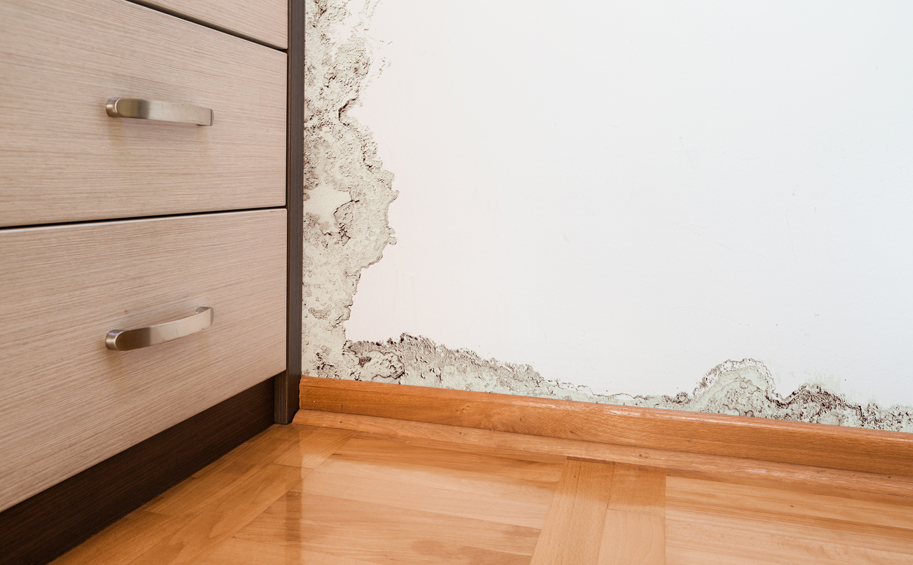 How to prevent mould after water damage - Produit contre humidite mur interieur ...