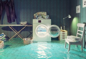 Minimize the Risks of Water Damage