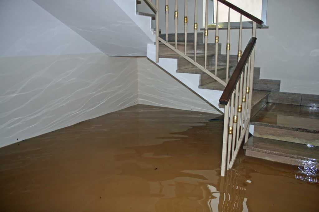 How to Clean Up Sewage in a Basement