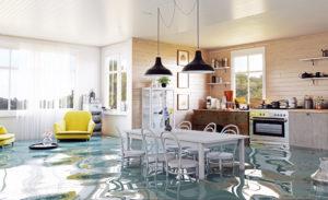 Minimize Flood Damage