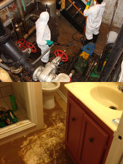 sewage backup cleanup in Toronto