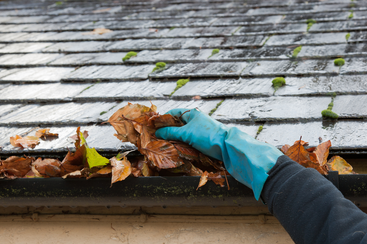 How Clogged Eavestroughs Can Damage Your Home